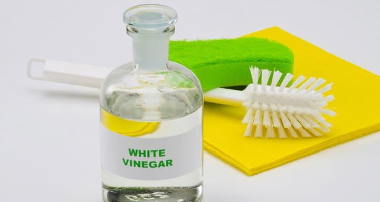 Les substituts profitables pour le nettoyage : le vinaigre blanc